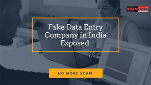 Fake Data Entry company in India